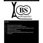 YBS Ansiklopedi Haziran 2015